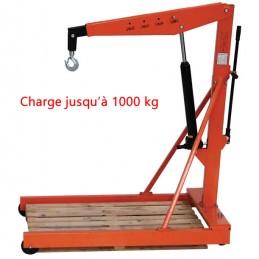 Grue d'atelier capacité 1000 kg