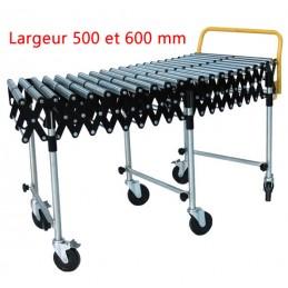 Convoyeur avec rouleaux acier longueur 3350 mm