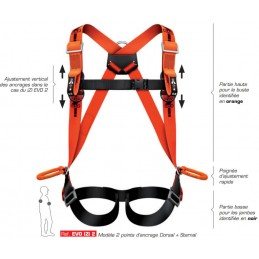 Harnais de sécurité 2 points d'ancrage dorsal et sternal