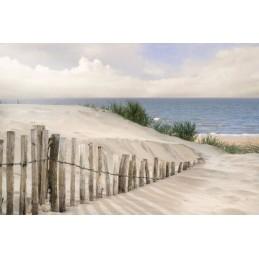 Cadres de décoration : dunes